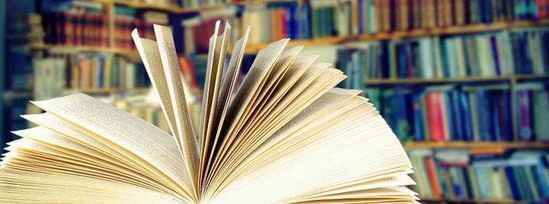 Bibliothèque municipale de Messines